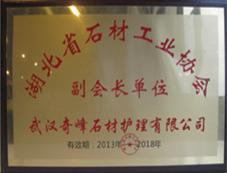 湖北省清洗保洁行业协会副会长单位