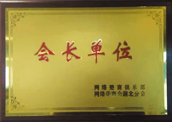 武汉华商会会长单位
